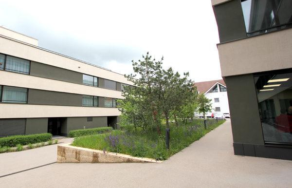 Außenbereich PRO Reinach AG